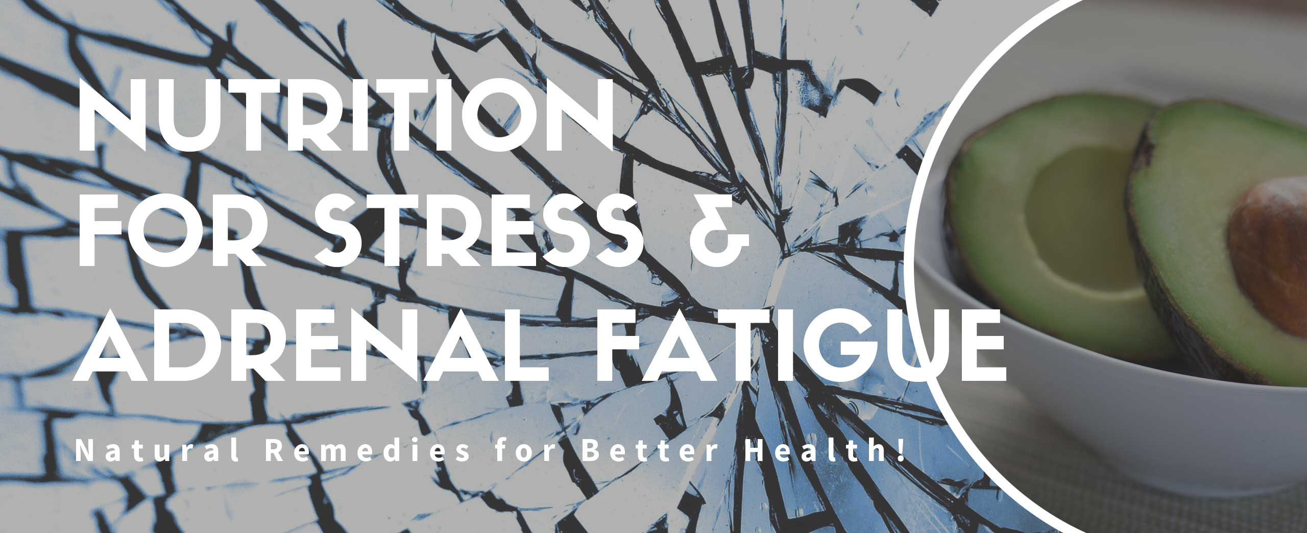 Nutrition - Stress & Adrenal Fatigue - Natural Diet & Fitness Plans - Salvatore DiLiello, N.D. Naturale Solutions, L.L.C